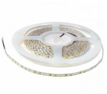 Фото1 AVT New-600СW3528-12 - LED лента SMD 3528, 120 д/м, 12V, 10500-11500К, IP20
