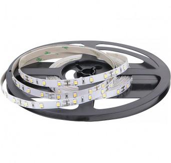 Фото1 AVT-Prof-300WW3528-12 - LED лента SMD 3528, 60 д/м, 12V, 3000-3500К, IP20
