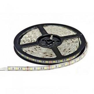 Фото1 AVT-300WW-F-5050-12 - LED лента SMD 5050, 60 д/м, 12V, 3000К, IP65