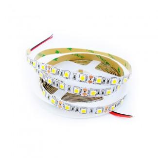 Фото1 AVT-300WW5050-12 - LED лента SMD 5050, 60 д/м, 12V, 3000К, IP20