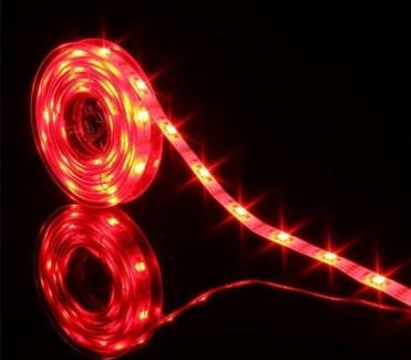 Фото2 МТК-300R5050-12 №1 - LED лента SMD 5050, 60 д/м, 12V, красный, IP20