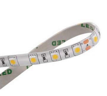 Фото1 AVT-300WF5050-12 - LED лента SMD5050, белый-холодный, 60 д/м, 12W, IP65