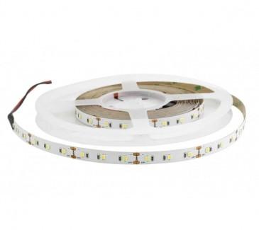 Фото1 AVT New-600W3528-12 - LED лента SMD 2835, 120 д/м, 12V, 6000-8000К, IP33