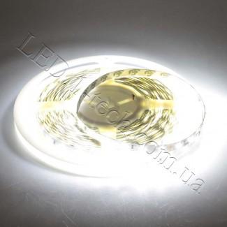 Фото2 ID-MKIII-W Холодно-белая LED лента, 60xSMD2835