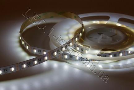 Фото4 RGBCW-5050-60-12 - Многоцветная RGB LED лента + белый холодный, 60xSMD5050