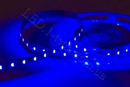 Фото2 RGBCW-5050-60-12 - Многоцветная RGB LED лента + белый холодный, 60xSMD5050