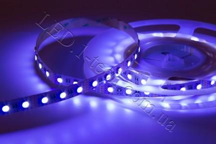 Фото5 RGBCW-5050-60-12 - Многоцветная RGB LED лента + белый холодный, 60xSMD5050