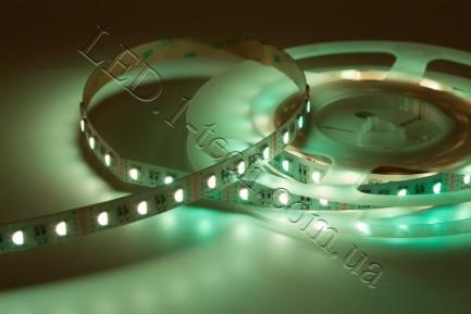 Фото6 RGBCW-5050-60-12 - Многоцветная RGB LED лента + белый холодный, 60xSMD5050