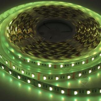 Фото10 RGBWW-5050-60-12 - Многоцветная RGB LED лента + белый теплый, 60xSMD5050