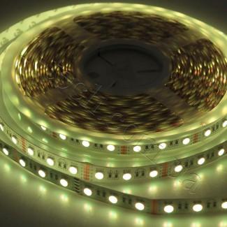 Фото14 RGBWW-5050-60-12 - Многоцветная RGB LED лента + белый теплый, 60xSMD5050