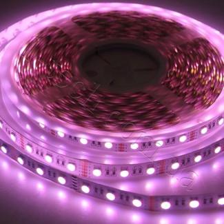 Фото3 RGBWW-5050-60-12 - Многоцветная RGB LED лента + белый теплый, 60xSMD5050
