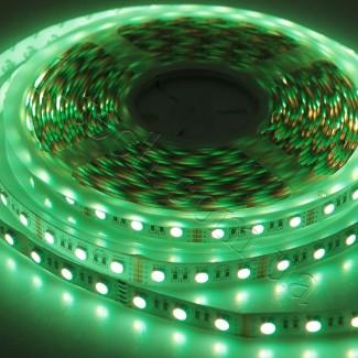 Фото3 RGBNW-5050-60-24 - Многоцветная RGB LED лента + белый нейтральный , 60xSMD5050