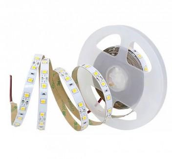 Фото1 MTK-300W4040-12 №1 - LED лента SMD 4040, 60 д/м, 12V, 5000К, IP33