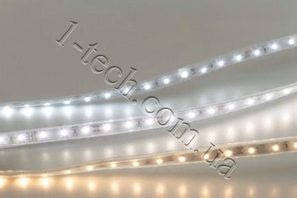 Фото3 TWF2-MKII-NW Нейтрально-белая LED лента герметичная IP65, 60xSMD3528