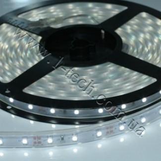 Фото1 TWF2-MKII-W Холодно-белая LED лента герметичная IP65, 60xSMD3528