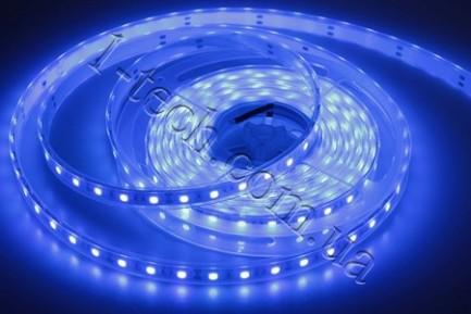Фото1 TWF3-B Синяя LED лента герметичная IP65, 60xSMD5050