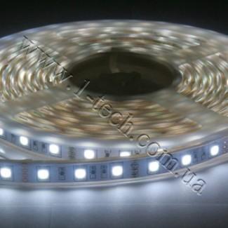 Фото1 TWF3-W Холодно-белая LED лента герметичная IP65, 60xSMD5050