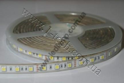 Фото2 TWF3-W Холодно-белая LED лента герметичная IP65, 60xSMD5050