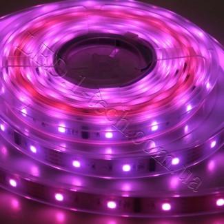 Фото13 WID-RGB-2 Magic Color Цифровая многоцветная RGB LED лента герметичная IP65, 30xSMD5050