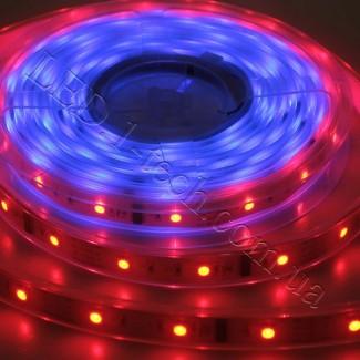 Фото3 WID-RGB-3 Magic Color Цифровая многоцветная RGB LED лента герметичная IP65, 30xSMD5050